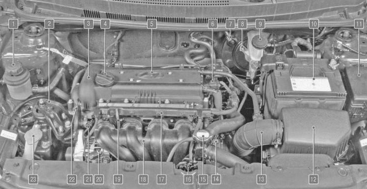 Подкапотное пространство автомобиля Hyundai Solaris с двигателем 1,4 л